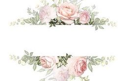 Vintage Card, Watercolor wedding invitation design with pink roses, bud, leaves....