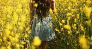 """⚜ """"Ich werde keine weitere Blume sein, die wegen meiner Schönheit ausgewählt..."""