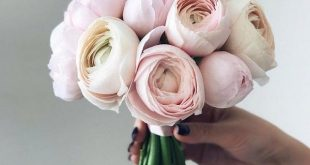20 Blush Pink and Ivory Neutral Wedding Color Ideas