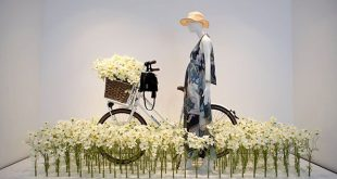 "HALLHUBER BIKE,Germany, ""Riding through a field of wild flowers"", pinned by Ton ..."