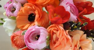 Love the orange flowers - bridesmaids' bouquets