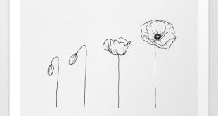 Poppy Flowering Phases Art Print by wildbloomart. Worldwide shipping available a...