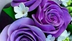 Purple rose garden 14