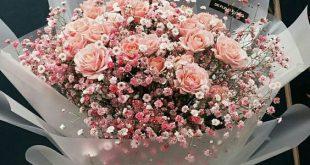Schicken Sie Blumen in diesem Februar in CDMX nach Hause - FLOWERS!! - #Blumen...
