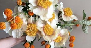 Still holding out hope for that bride who loves orange. flowers and photo by yas...